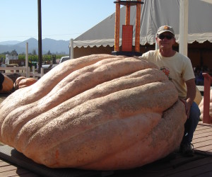 Joel Holland holds the Washington state record with this pumpkin from 2009.  Photo by Mari Lou Holland