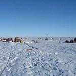 Pine Island Glacier: Plugging up Antarctica's Slide