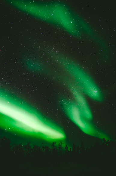 The Northern lights (courtesy of A. Kopatz)