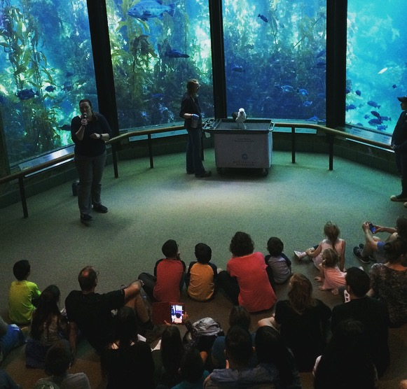 Makana captivates her audience at the Monterey Bay Aquarium. The presentation places significant emphasis on the reduction of single-use plastic items like straws, water bottles, and of course, bags.