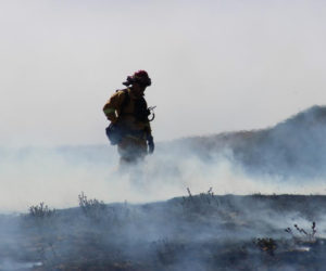 A firefighter checks for hot spots by the Soberanes Fire. This fire cost $250 million and is one of the costliest fires in the history of the U.S. Photo from the U.S. Department of Agriculture via Flikr.