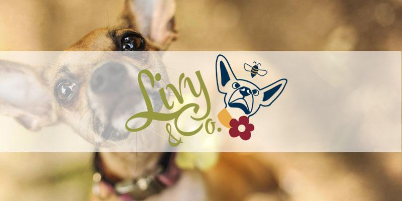 Livy & Company Branding