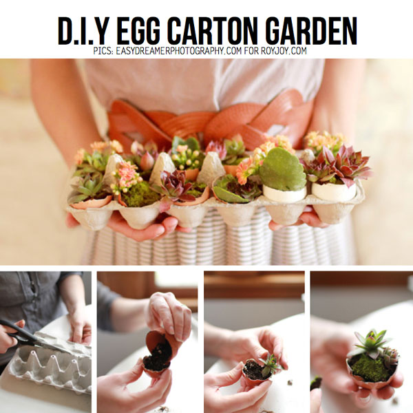 egg-carton-garden-Scraphacker