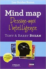 Mindmap dessine moi intelligence