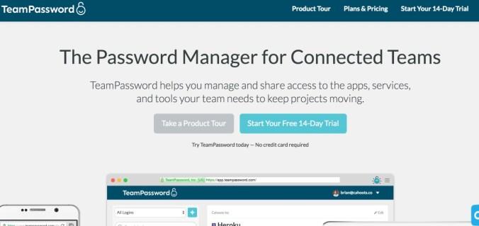 Team Password