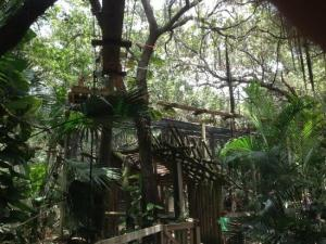 Brevard Zoo's Treetop Trek
