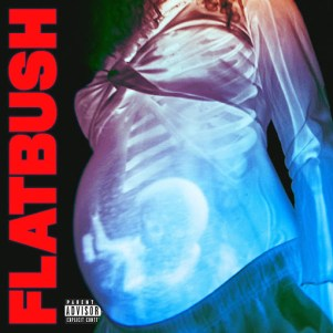 "Flatbush ZOMBiES - ""Afterlife"""