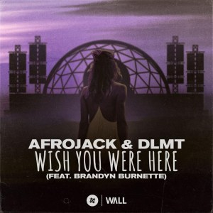 Afrojack & DLMT – Wish You Were Here