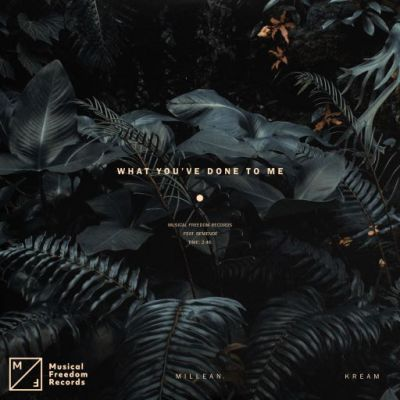 KREAM, Millean - What You've Done To Me (feat. Bemendé)