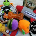 Your Pet Will Love PetSmart Halloween