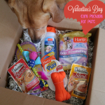 Valentine's Day Care Package for Pets