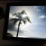 The Nixplay Seed WiFi Digital Photo Frame is an AMAZING Way to Display Photos