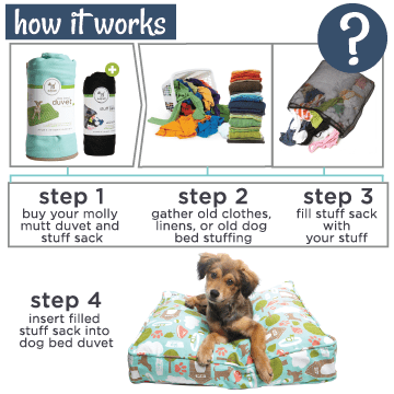 comforting bed for your pup