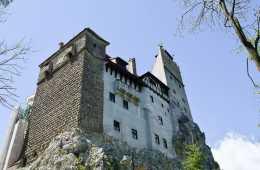 Bran-Castle Transylvania Romania