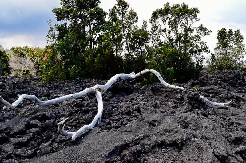 Lava Field Volcanoes National Park Hawaii Big Island Best Things to do