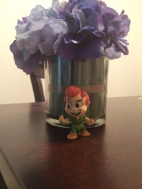 Peter Pan Mystery Mini
