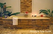 Amuma Spa Suite - Photos from Amuma Spa Website (used with permission)