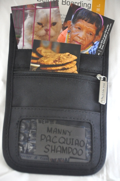 RFID Blocking Deluxe Boarding Pouch