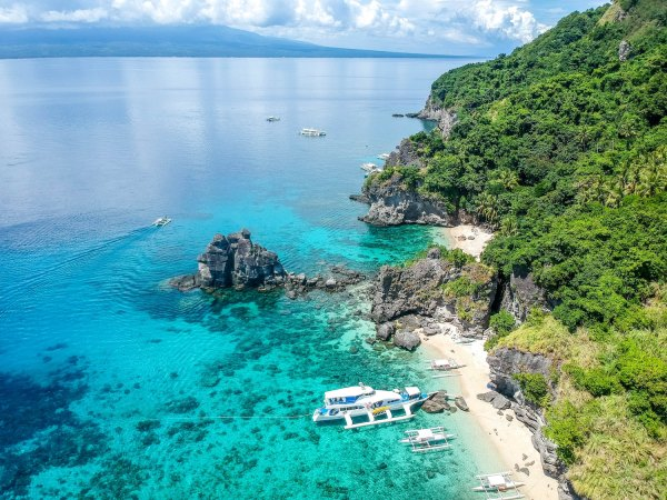 Diving in Apo Island Negros Oriental photo by Cris Tagupa via Unsplash