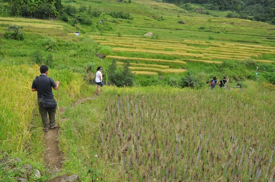 On our way to an old Ifugao Village in Kiangan
