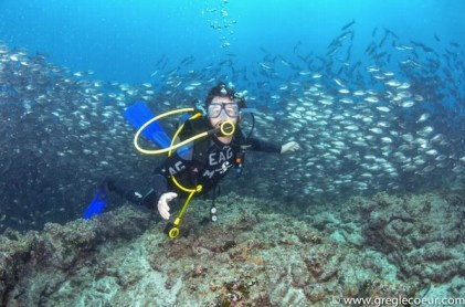 Diving off Daphne, Galapagos Islands in Equador