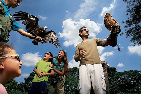 Jurong Bird Park Tourists