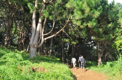 A short trek to Kublai's Agong House