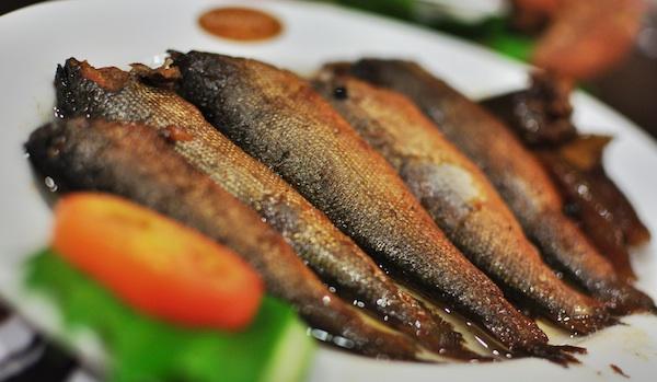 Bangus Sardines