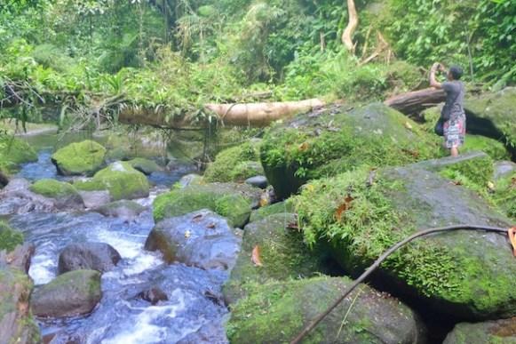 River in Malabsay Falls