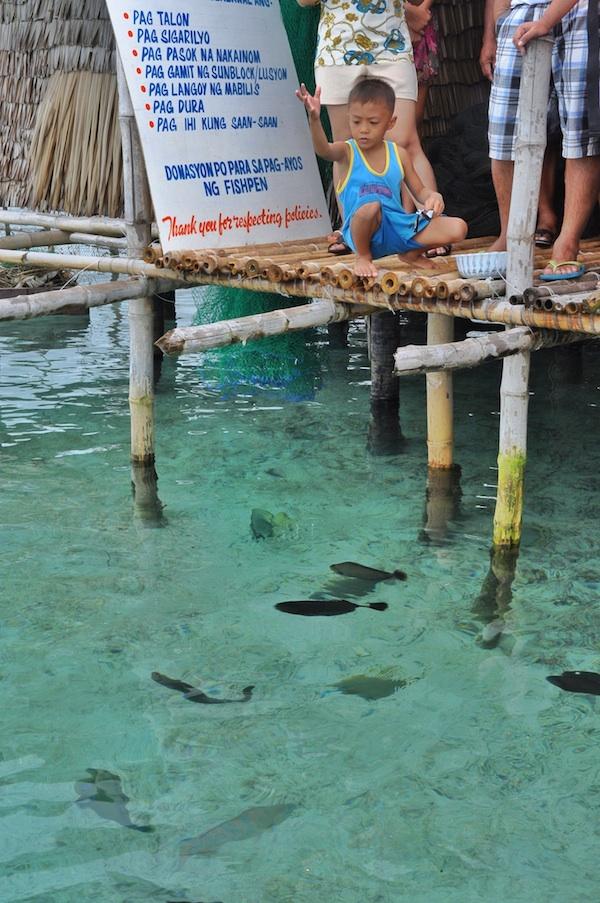Fish Feeding at Juag Fish Sanctuary