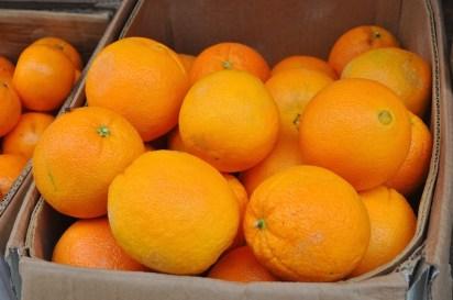 Sagada Orange
