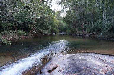 Virachey National Park by Save Virachey National Park FB Page