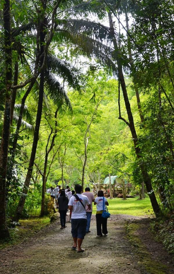 Philippine Tarsier Sanctuary