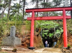 Japanese Tunnel Walk in Baguio Botanical Park