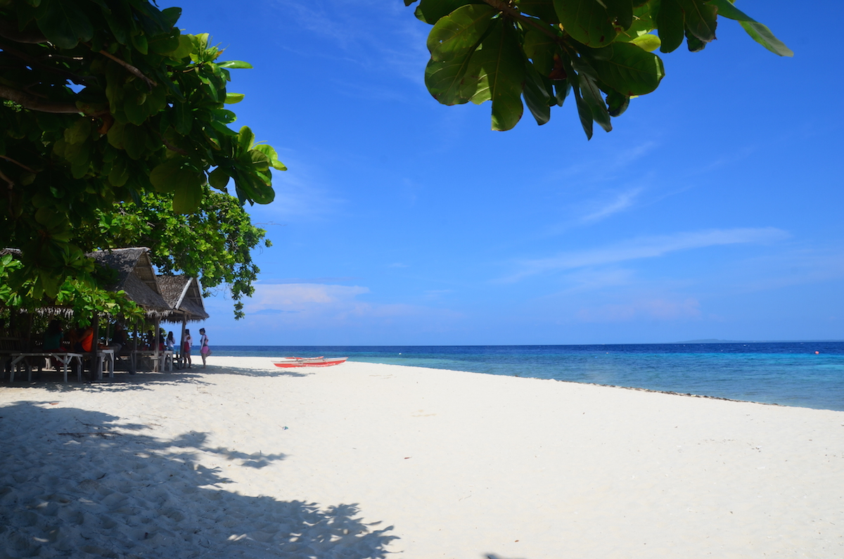 Pamilacan Island Travel Guide Activities How To Get