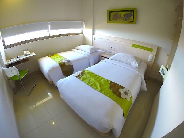 Deluxe Doubt Bed Room