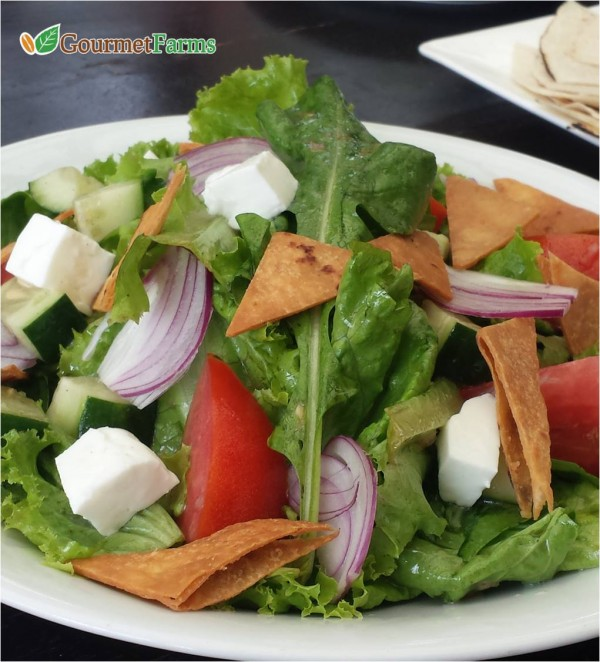 Gourmet Salad from Gourmet Farms