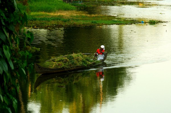 Lady boating in Kerala Backwaters photo by -Reji via Flickr