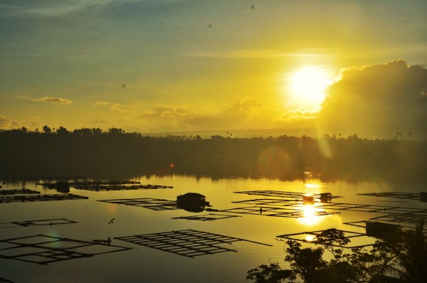 Sunrise in Sampaloc Lake