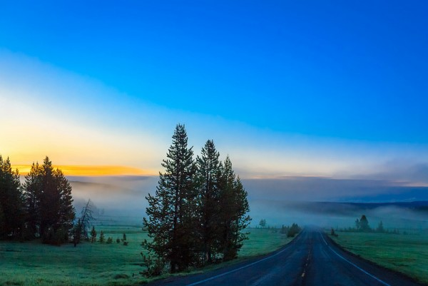 Morning Mist in Wyoming