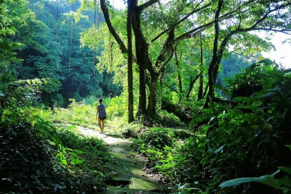 Sample Landscape Photo using Canon M3 - Bulusan Lake Trail in Sorsogon