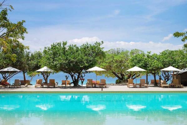 swimming pool club paradise