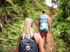 Amazon Jungle Walk