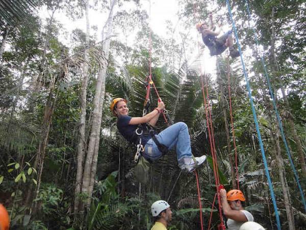 Brazil Nut Tree Climbing