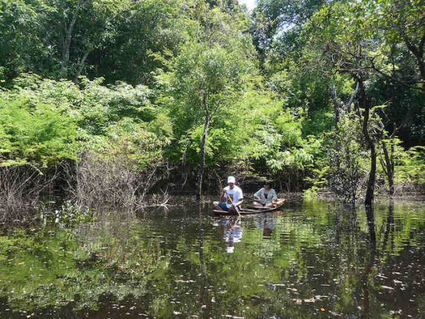 Canoe Rowing