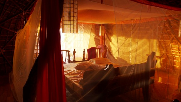 Enveloped by a white mosquito net