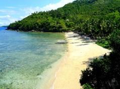 The beautiful Hermit's Cove shoreline