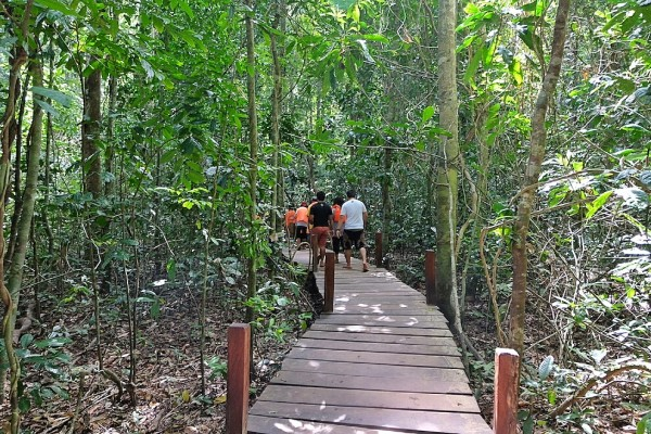 wooden walkway to the Underground river