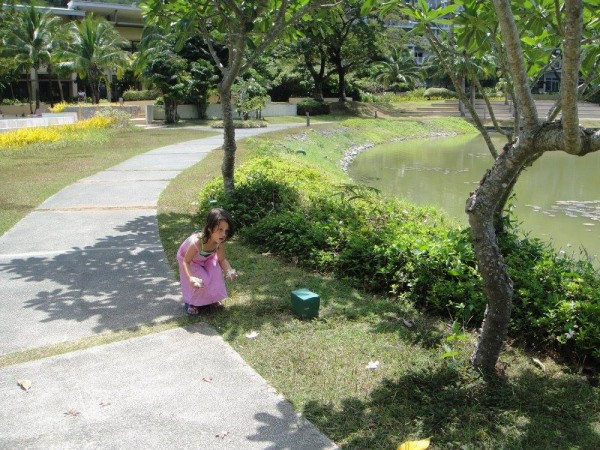 How vast is the playground at Pico de Loro...only a wandering child knows.