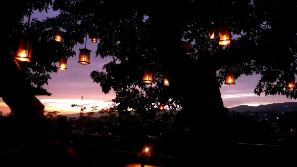 Romantic tree lamps
